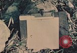Image of 1st Marine Division Peleliu Palau Islands, 1944, second 2 stock footage video 65675022899