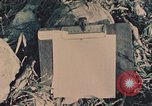 Image of 1st Marine Division Peleliu Palau Islands, 1944, second 3 stock footage video 65675022899