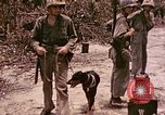 Image of First Division Marines Peleliu Palau Islands, 1944, second 3 stock footage video 65675022907