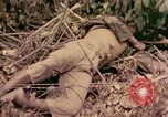 Image of 1st Tank Battalion Command Post Peleliu Palau Islands, 1944, second 1 stock footage video 65675022910