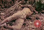 Image of 1st Tank Battalion Command Post Peleliu Palau Islands, 1944, second 3 stock footage video 65675022910