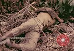 Image of 1st Tank Battalion Command Post Peleliu Palau Islands, 1944, second 5 stock footage video 65675022910