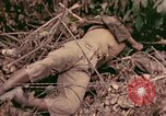 Image of 1st Tank Battalion Command Post Peleliu Palau Islands, 1944, second 6 stock footage video 65675022910
