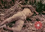Image of 1st Tank Battalion Command Post Peleliu Palau Islands, 1944, second 8 stock footage video 65675022910