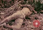Image of 1st Tank Battalion Command Post Peleliu Palau Islands, 1944, second 10 stock footage video 65675022910