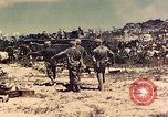 Image of 1st Tank Battalion Peleliu Palau Islands, 1944, second 8 stock footage video 65675022912