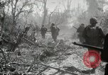 Image of 11th Marine Division Peleliu Palau Islands, 1944, second 2 stock footage video 65675022917