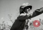 Image of 11th Marine Division Peleliu Palau Islands, 1944, second 7 stock footage video 65675022917