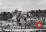 Image of United States Marine Corps Peleliu Palau Islands, 1944, second 5 stock footage video 65675022926