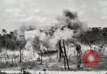 Image of United States Marine Corps Peleliu Palau Islands, 1944, second 9 stock footage video 65675022926
