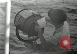 Image of United States Marines Peleliu Palau Islands, 1944, second 3 stock footage video 65675022942
