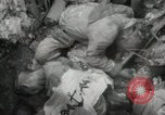 Image of 5th Marines Division Peleliu Palau Islands, 1944, second 11 stock footage video 65675022950