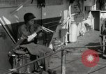 Image of United States Marines Peleliu Palau Islands, 1944, second 2 stock footage video 65675022954