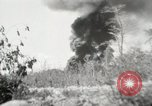 Image of United States Marines Peleliu Palau Islands, 1944, second 3 stock footage video 65675022957