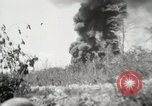 Image of United States Marines Peleliu Palau Islands, 1944, second 5 stock footage video 65675022957