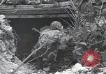 Image of United States Marine Corps Peleliu Palau Islands, 1944, second 7 stock footage video 65675022965