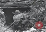 Image of United States Marine Corps Peleliu Palau Islands, 1944, second 8 stock footage video 65675022965