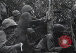 Image of Bloody Nose Ridge Peleliu Palau Islands, 1944, second 7 stock footage video 65675022968