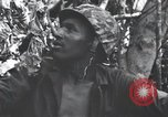 Image of Bloody Nose Ridge Peleliu Palau Islands, 1944, second 11 stock footage video 65675022968