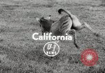 Image of Zonkey California United States USA, 1953, second 4 stock footage video 65675023023