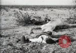 Image of federal soldiers Ojinaga Mexico, 1913, second 9 stock footage video 65675023029