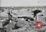 Image of Burying deceased Federals Ojinaga Mexico, 1913, second 8 stock footage video 65675023034