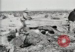 Image of Burying deceased Federals Ojinaga Mexico, 1913, second 9 stock footage video 65675023034