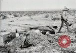 Image of Burying deceased Federals Ojinaga Mexico, 1913, second 11 stock footage video 65675023034