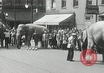Image of Elephants bowling tourney Cincinnati Ohio USA, 1934, second 2 stock footage video 65675023131