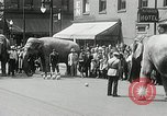 Image of Elephants bowling tourney Cincinnati Ohio USA, 1934, second 5 stock footage video 65675023131