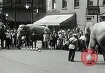 Image of Elephants bowling tourney Cincinnati Ohio USA, 1934, second 6 stock footage video 65675023131