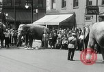 Image of Elephants bowling tourney Cincinnati Ohio USA, 1934, second 8 stock footage video 65675023131
