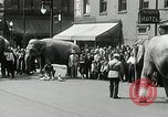 Image of Elephants bowling tourney Cincinnati Ohio USA, 1934, second 9 stock footage video 65675023131
