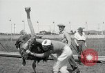 Image of Ostrich race El Cerrito California USA, 1934, second 12 stock footage video 65675023137