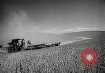 Image of Wheat or Allied Forces Walla Walla Washington USA, 1944, second 9 stock footage video 65675023160
