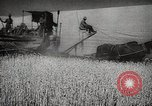 Image of Wheat or Allied Forces Walla Walla Washington USA, 1944, second 12 stock footage video 65675023160
