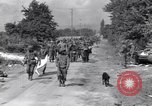 Image of Captured Nazi prisoners Chambois France, 1944, second 10 stock footage video 65675023538