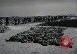 Image of Nazi atrocities Leipzig Germany, 1945, second 11 stock footage video 65675023571