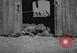 Image of Bodies of political prisoners Gardelegen Germany, 1945, second 12 stock footage video 65675023572