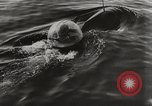 Image of German Neger one-man torpedo carrier craft Lubeck Germany, 1944, second 11 stock footage video 65675023573