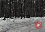 Image of Ford automobile with skis Michigan United States USA, 1918, second 5 stock footage video 65675023594