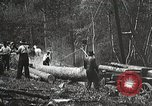 Image of workers load timber United States USA, 1926, second 4 stock footage video 65675023598