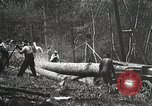 Image of workers load timber United States USA, 1926, second 5 stock footage video 65675023598