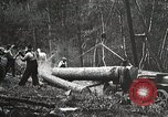 Image of workers load timber United States USA, 1926, second 6 stock footage video 65675023598