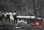 Image of workers load timber United States USA, 1926, second 8 stock footage video 65675023598