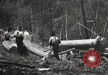 Image of workers load timber United States USA, 1926, second 11 stock footage video 65675023598