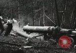 Image of Emergency Conservation Work members United States USA, 1933, second 3 stock footage video 65675023604