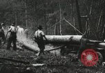 Image of Emergency Conservation Work members United States USA, 1933, second 4 stock footage video 65675023604