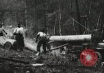 Image of Emergency Conservation Work members United States USA, 1933, second 7 stock footage video 65675023604