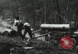 Image of Emergency Conservation Work members United States USA, 1933, second 9 stock footage video 65675023604